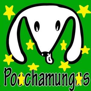 Pooch head stars